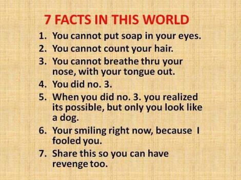7 facts