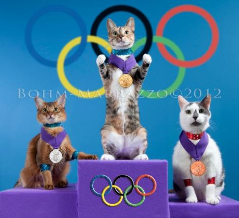 cat olympics